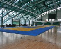 Более 10 спортивных сооружений построят в Москве до конца года