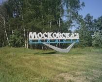 Счетная палата подтвердила неэффективность использования лесного фонда в Подмосковье