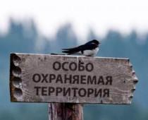 В Подмосковье появится 39 особо охраняемых природных территорий
