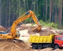 ОНФ: В Подмосковье уничтожено 140 га леса из-за добычи песка