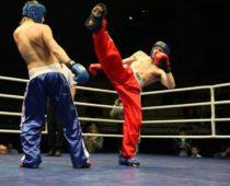 В Подмосковье пройдет Чемпионат и Первенство России по кикбоксингу