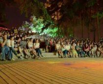 «Ночь кино» пройдет более чем на 50 киноплощадках Воронежской области