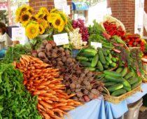 Первый фермерский рынок открылся в Тульской области