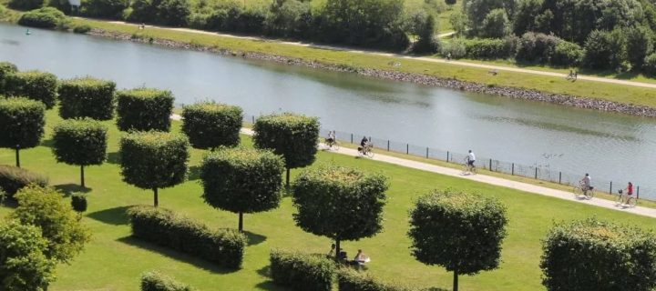 Около полумиллиарда рублей выделено в Подмосковье на создание парков в текущем году