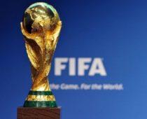 Кубок мира ФИФА отправился из Курска в Воронеж