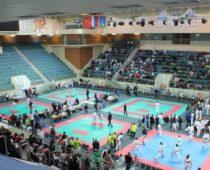 Более 700 человек приняли участие во Всероссийских соревнованиях по каратэ в Одинцово