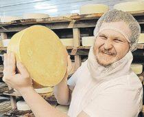 Сыроварам Подмосковья выделят 60 млн рублей господдержки
