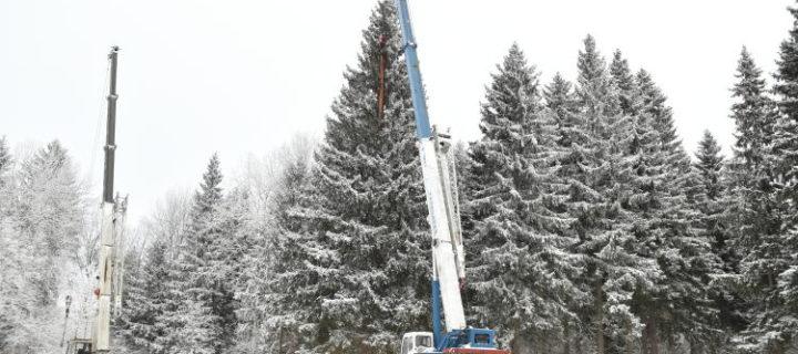 Главную новогоднюю ель страны срубят в Подмосковье