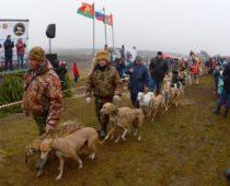 В Липецкой области возрождают старинную псовую охоту