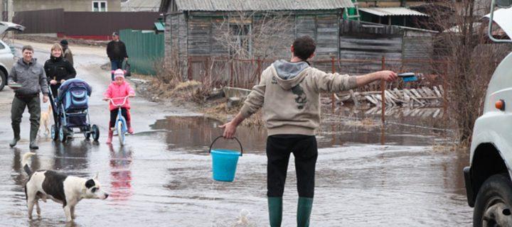 Более 40 населенных пунктов Воронежской области могут пострадать от паводка