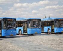 Более 750 новых автобусов выйдет на улицы Москвы до конца года