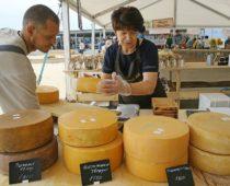 Сырный фестиваль пройдет в Подмосковье в августе