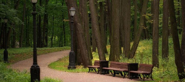 В Москве с 2010 года благоустроили около 500 парков