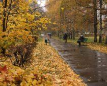 В Московский регион придет похолодание