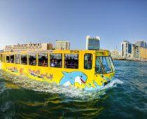 В Москве планируют запустить экскурсионные автобусы-амфибии