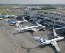 Жители Подмосковья выберут имена для аэропортов «Шереметьево» и «Домодедово»