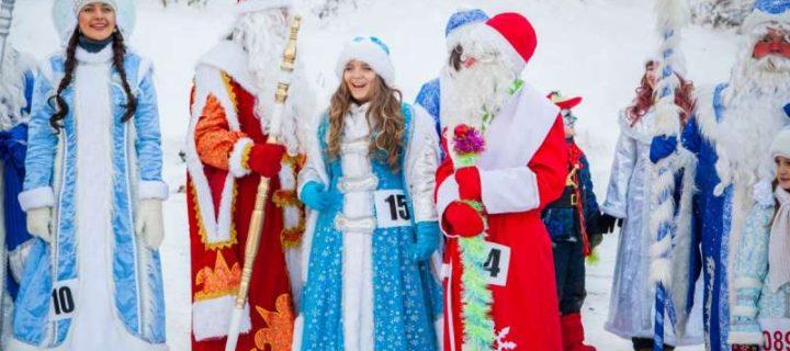 Всероссийский слет Дедов Морозов и Снегоручек пройдет в Туле