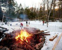 В лесах Подмосковья откроют девять площадок для зимнего отдыха