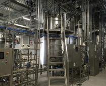 Болгарский бизнес откроет производство в Подмосковье