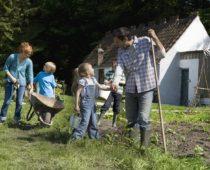 Более 3 тыс. многодетных семей получат бесплатные участки в Подмосковье