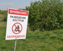 Запрет на разведение костров введут на майские праздники в Подмосковье