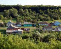 Тамбовская область получила почти 3 млрд руб из бюджета на развитие села