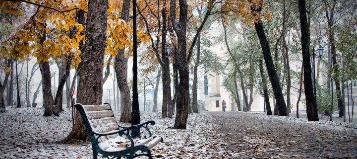Самая холодная осенняя ночь зафиксирована в Москве