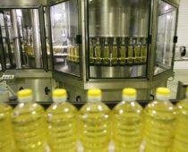 Завод по производству соевого масла за 6 млрд руб. построят под Липецком
