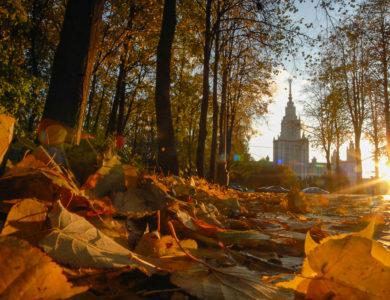 Гидрометцентр пообещал москвичам теплые выходные