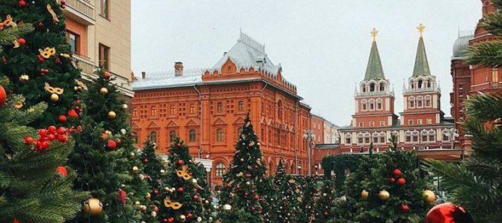 Лес из 130 новогодних елей установят на Манежной площади в центре Москвы