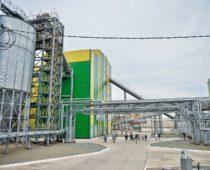 Маслоэкстракционный завод за 7,2 млрд руб. откроют в Липецкой области