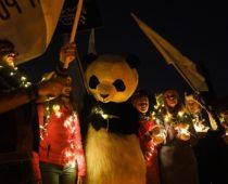 В Подмосковье в ходе акции «Час Земли» погасят свет почти на 500 объектах