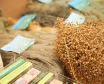 В Тверской области пройдет День льняного поля