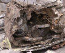 В Курской области обнаружили останки немецкого истребителя времен ВОВ