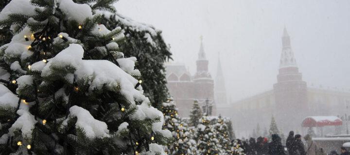 Более 10 см снега выпадет в Москве за сутки
